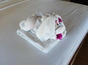 towel animal day2