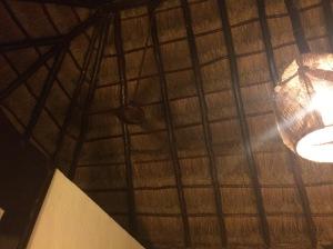 cabana roof